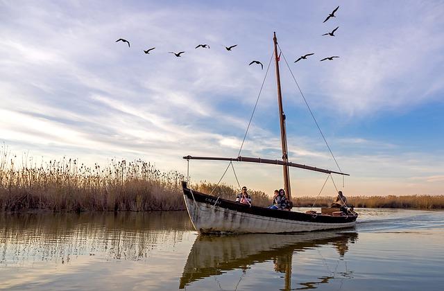 Paseos en barca Albufera