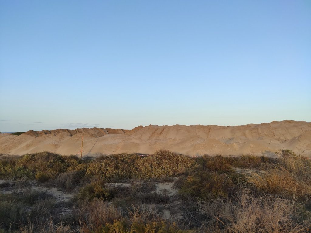 Cordon dunar de la Devesa del Saler